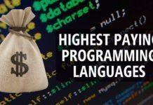 programmer salary